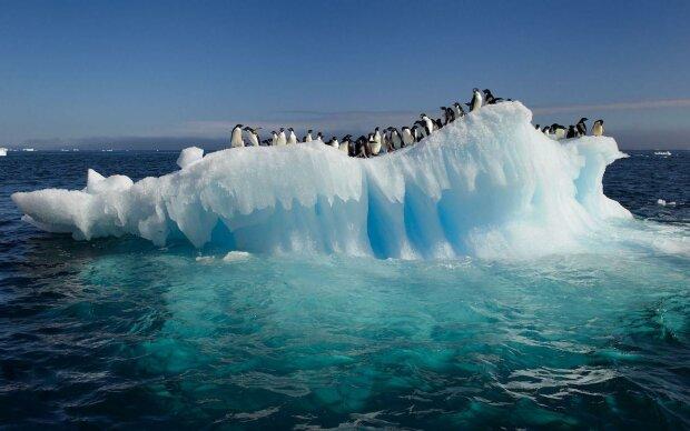 В Антарктиді зафіксували температурний рекорд — +20°C