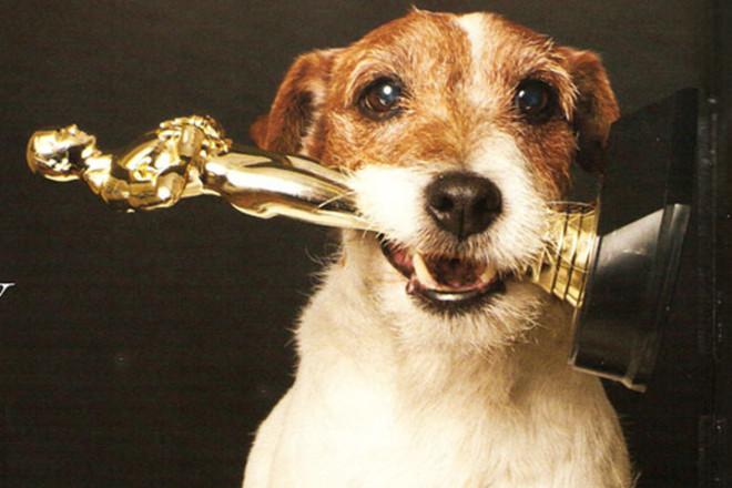 «Оскар» по всем номинациям заслуживает именно это видео!