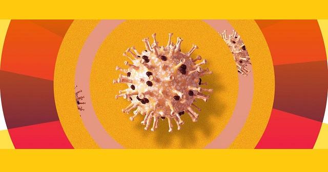 Китайські вчені з'ясували, при якій температурі гине коронавірус