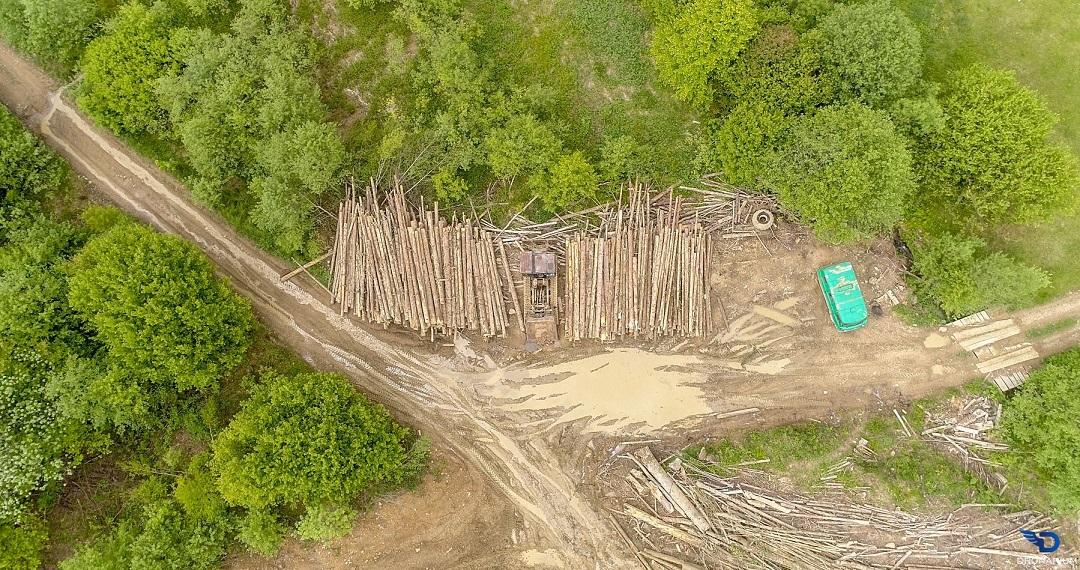 Украинские Карпаты стремительно «лысеют»: фото экологического бедствия с высоты