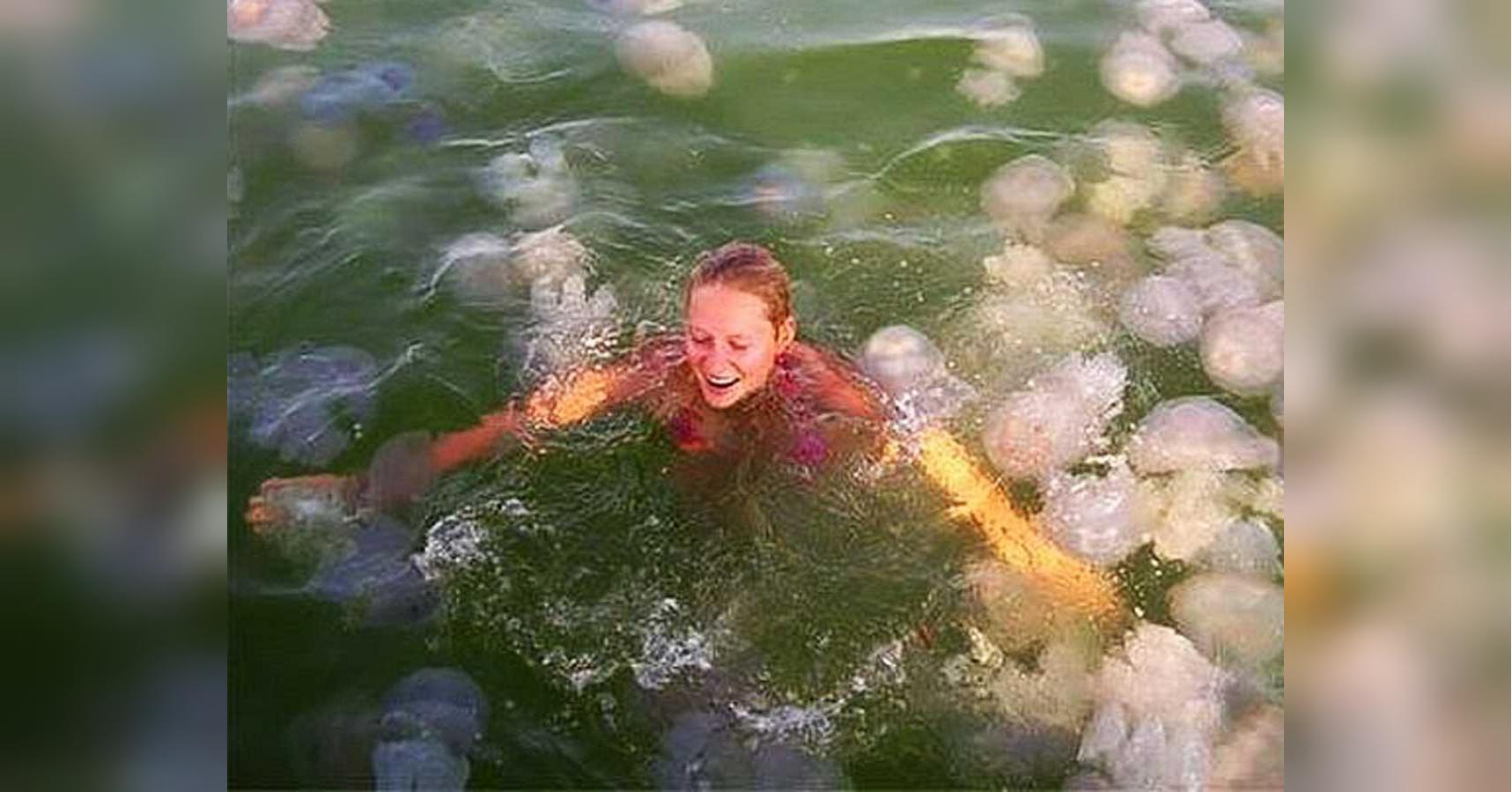 Курорт на Азовском море атаковали медузы: у отдыхающих ожоги. Фото и видео