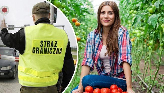 Заробитчане в Польше: новые правила пересечения границы, тесты и отмена карантина