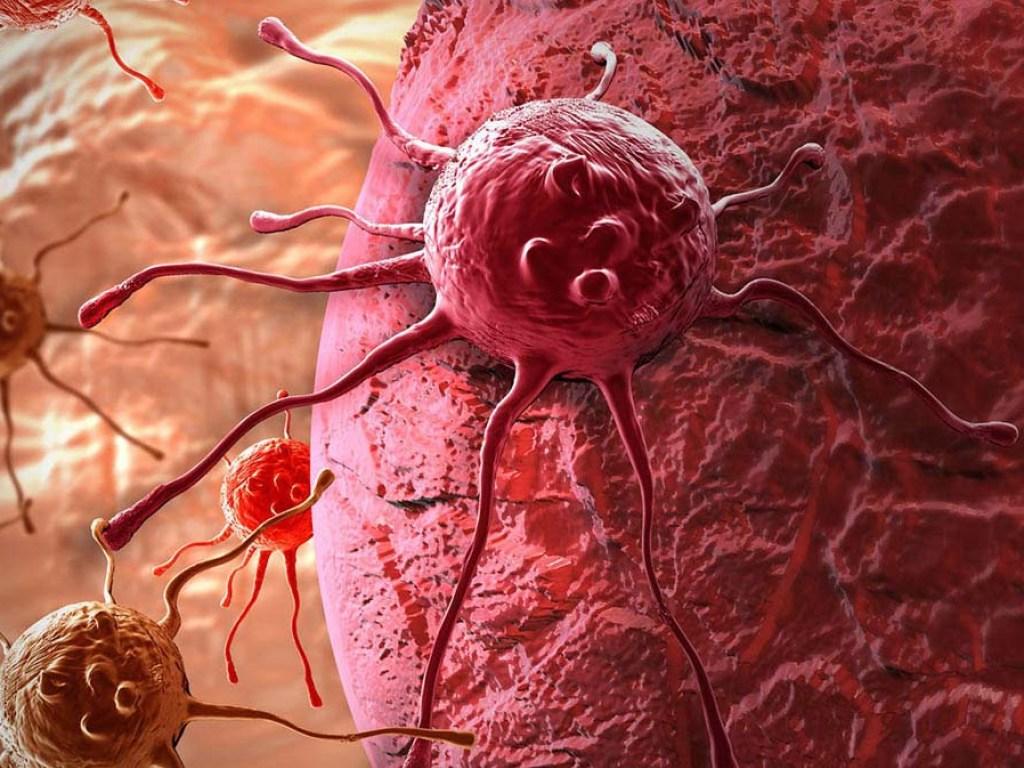 Австралийские ученые заявили о чудо-средстве для борьбы с раком