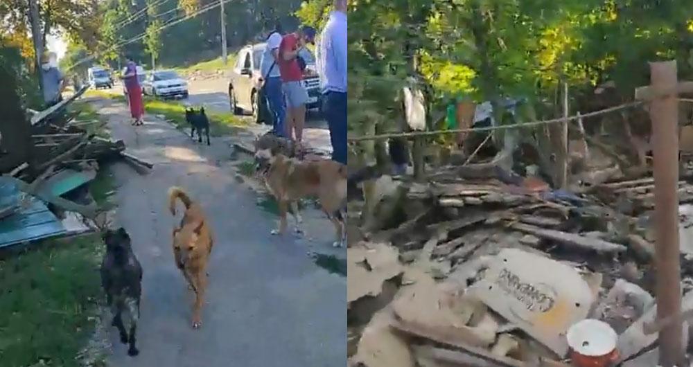 Наживо! У Полтаві молодики зносять притулок для тварин. Собак викидають на вулицю!