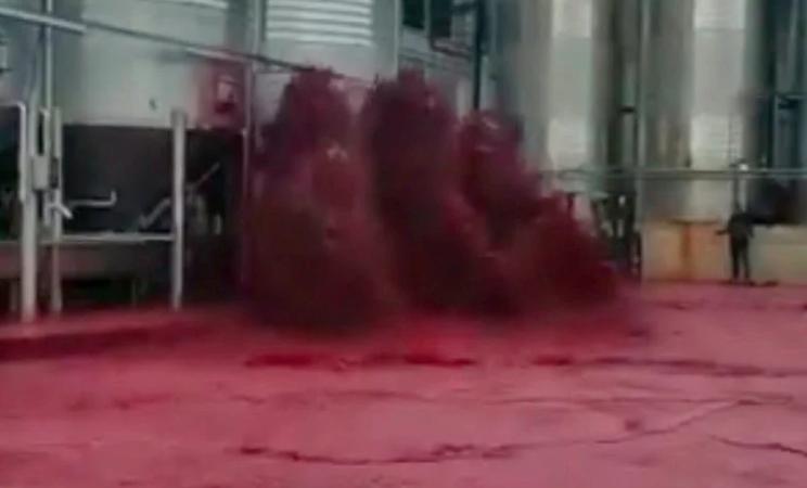 50 тисяч літрів. В Іспанії затопило червоним вином цілий завод: відео