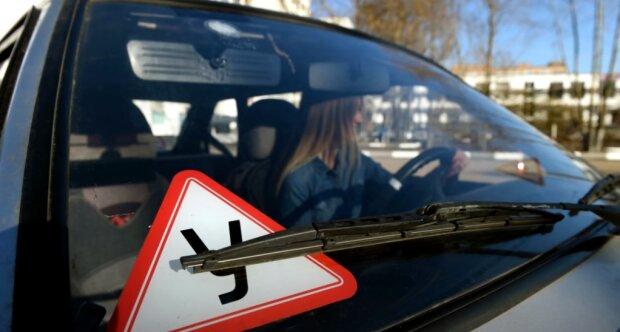 Водійські права та техпаспорти доведеться замінити: українських водіїв «обрадували» нововведенням