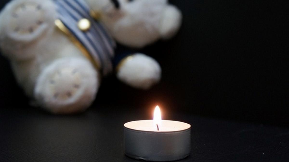 В Днепре 2-летний малыш, которого покусали собаки, умер в реанимации