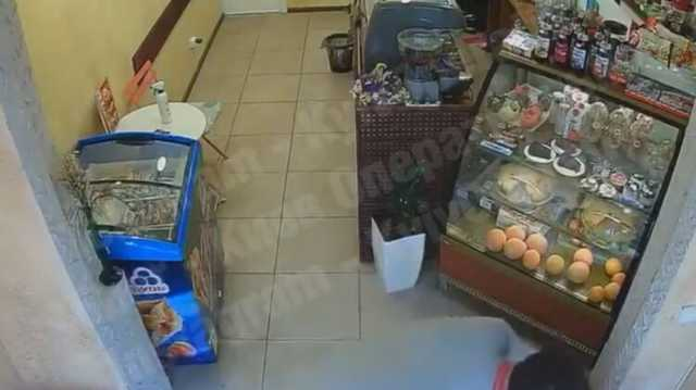 Появилось видео, как неадекватный человек пытался ограбить и избил в Киеве баристу