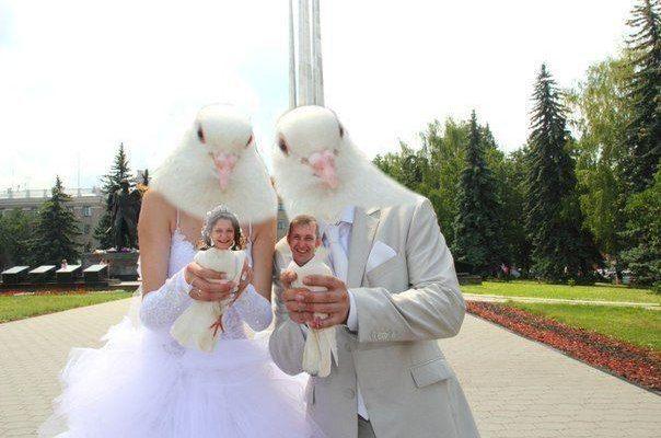 Улыбнитесь, друзья! Подборка смешных снимков со свадеб