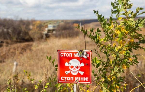 На Луганщині матір із сином підірвалися в полі на міні