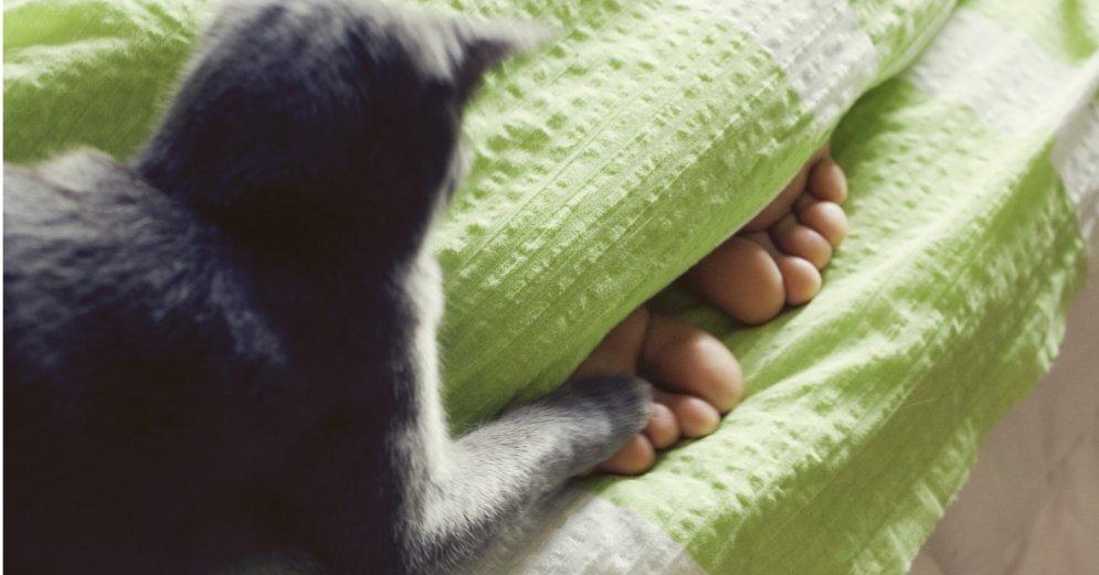Невролог назвал болезни, о которых предупреждают холодные ноги