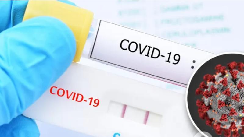 Чому помиляються ПЛР-тести на коронавірус в Україні: вірусологи назвали головні причини