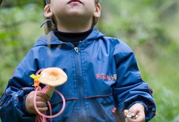 Ребенок поел грибы. Находится в реанимации. Нужны доноры 4, отрицательная. Киев!!