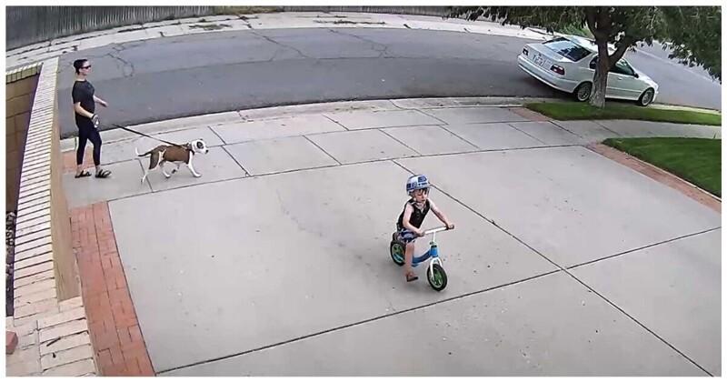 Твори добро! Реакция мужчины на то, что возле его гаража катается чужой ребенок (ВИДЕО)