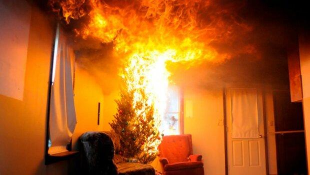 В Одесской области из-за новогодней гирлянды сгорел жилой дом
