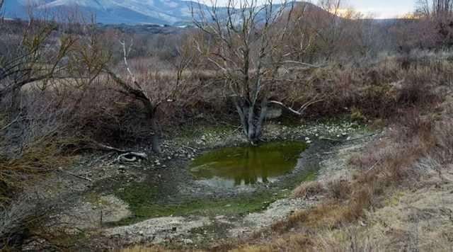 В Крыму пересохли «ванны молодости» из-за водного коллапса