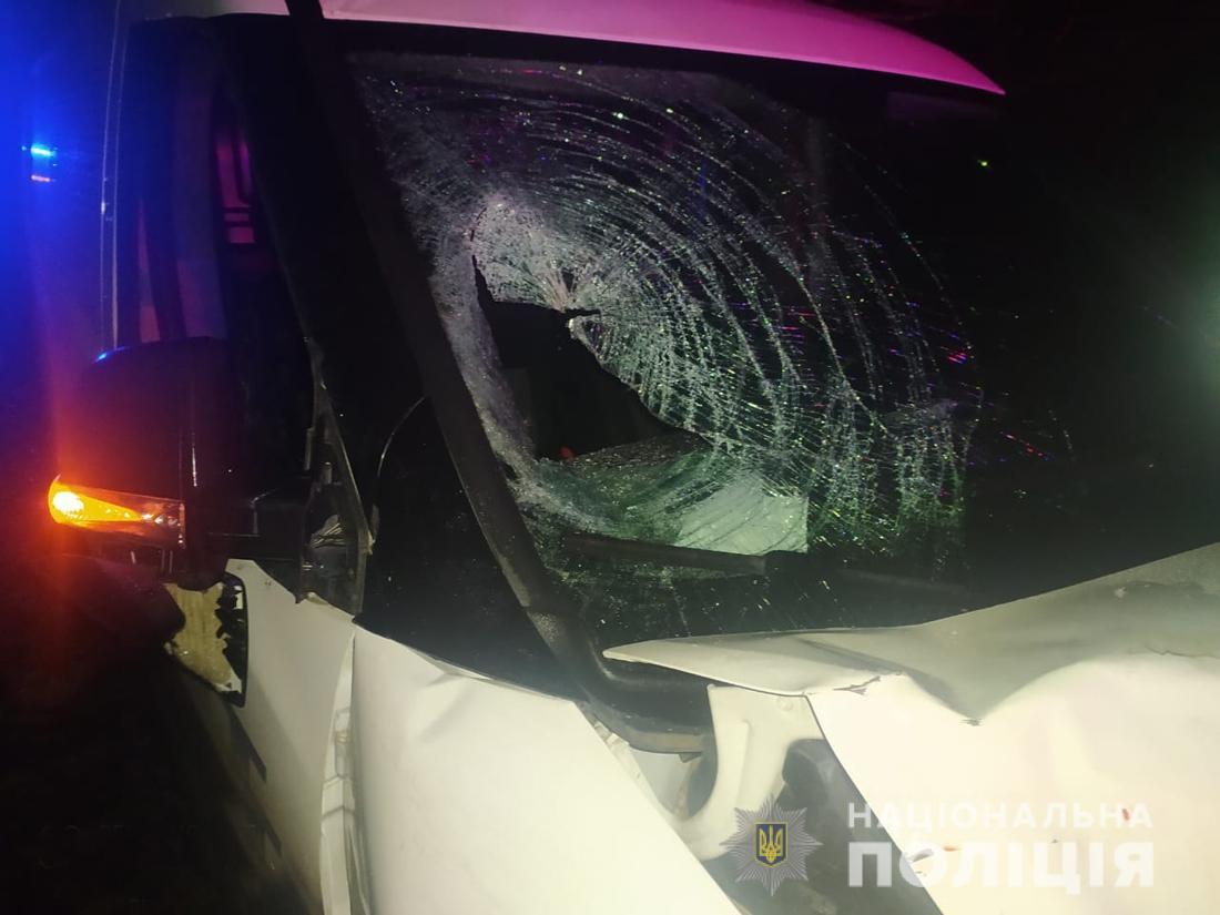 В Житомирской области водитель авто наехал на группу детей: 10-летний мальчик умер