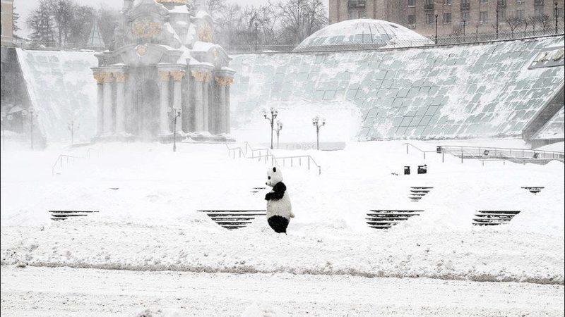 В Киеве объявили штормовое предупреждение: выпадет до 30 сантиметров снега