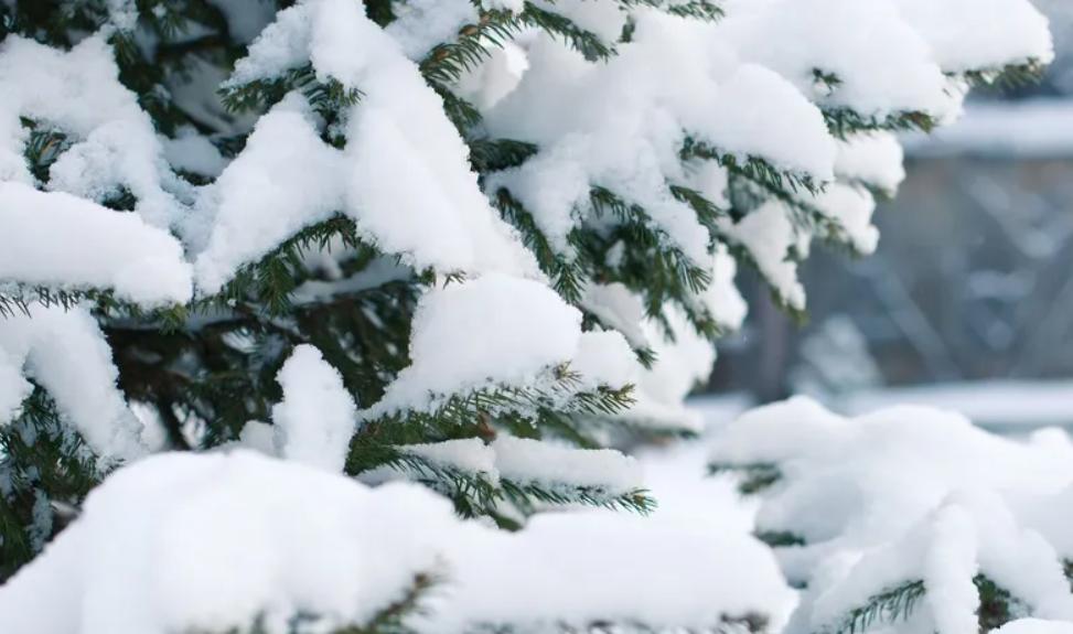 В Украину вернется снег и морозы: синоптики озвучили прогноз погоды