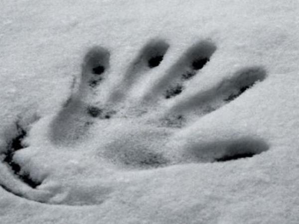 17-річний хлопець-сирота замерз у полі: на Житомирщині знову трагічно загuнула молода людина