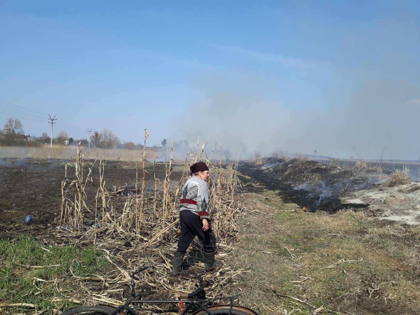 ДСНС Україини: «Жінка поблизу селища Гостомель, Ірпінського регіону, навмисно підпалює сухостій на відкритій території»