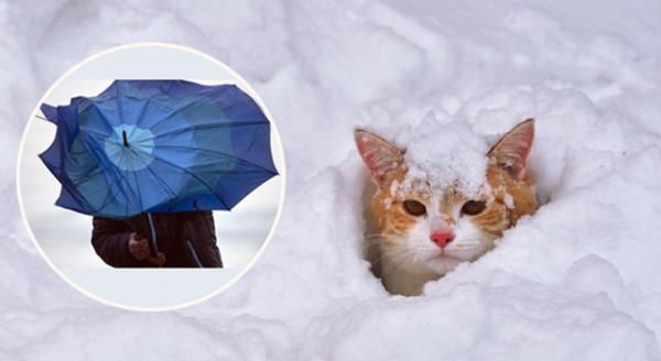 Хуртовини, дощі та штормовий вітер: в Україні ускладниться погода (СИНОПТИЧНІ КАРТИ)