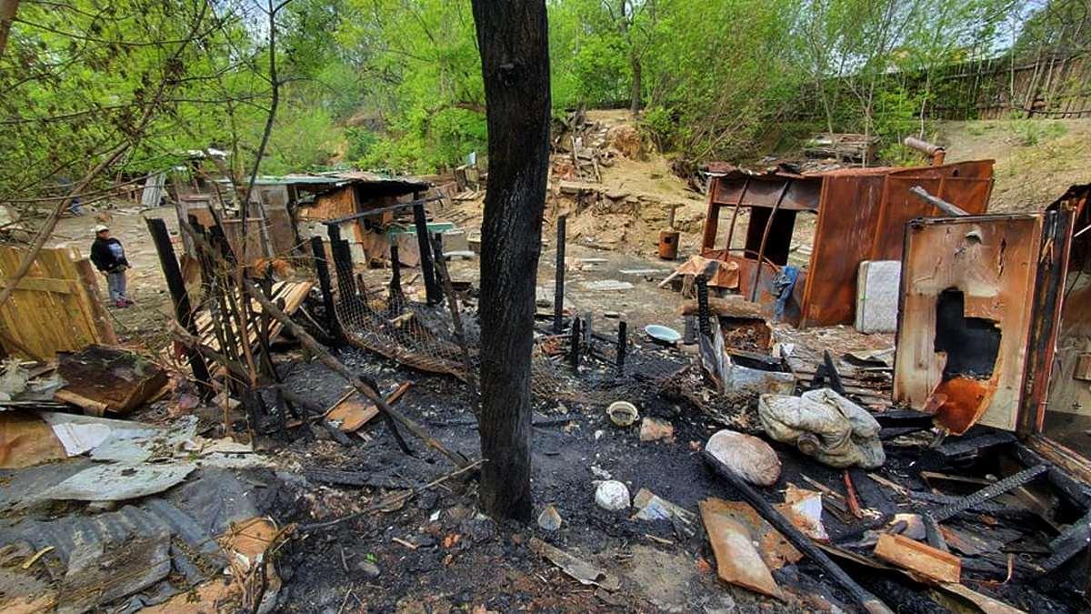 В центре Киева подожгли приют для животных и избили мужчину, который за ними присматривал