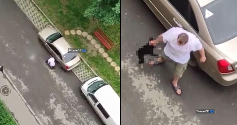 В Харькове пьяница избил своего пса. Собака пряталась под машину