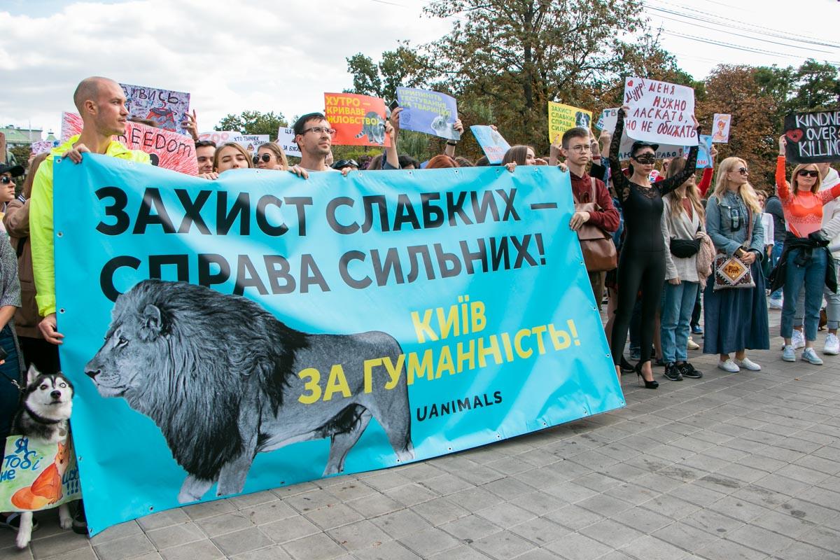 В Киеве пройдет Всеукраинский марш в защиту животных: где и когда